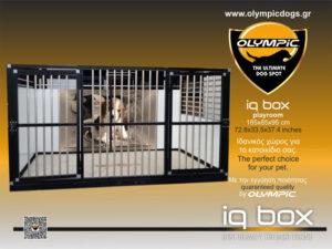 iqbox-playRoom-02