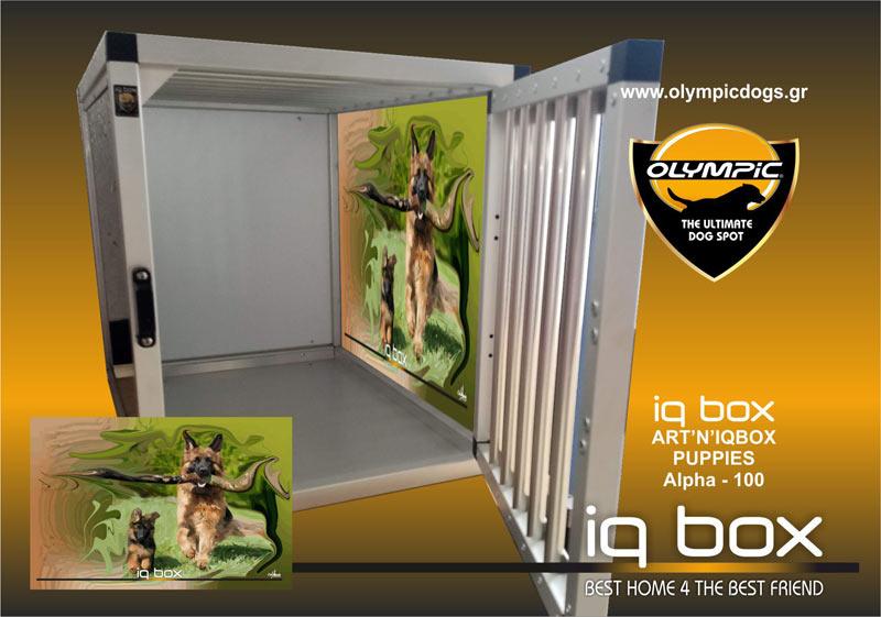 ART-IQ-promoSite-100-1