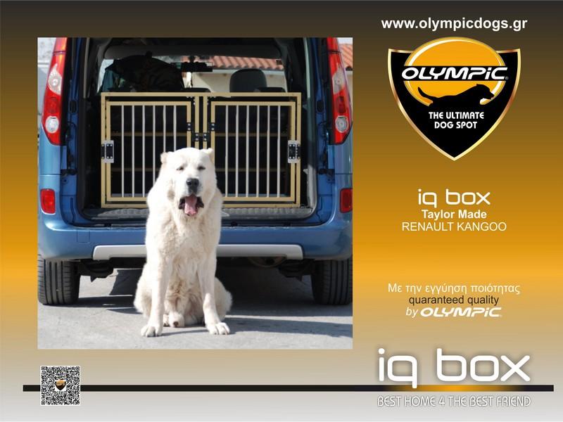 iqbox-RENAULT KANGOO-001