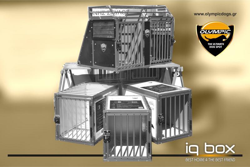 iqbox-index-002
